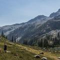 Alpine meadows.- Ring Lake Trail