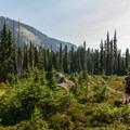 Enjoying the scenery.- Ring Lake Trail