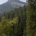 View of Kessler Peak (10,403') from the Donut Falls Trail.- Donut Falls