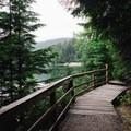 Boardwalk that runs along the lake. - Sasamat Lake