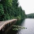 Boardwalk running along the east side of the lake. - Sasamat Lake