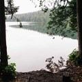 A great spot to stop along the shore. - Sasamat Lake