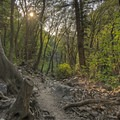 This trail is quite unique; it does not look like many of the neighboring trails.- Ferguson Canyon Trail Hike
