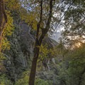 Beautiful light in a magical place.- Ferguson Canyon Trail Hike