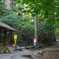 Trailhead and park information.- Lighthouse Park