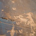 Some of the Moonflower Canyon petroglyphs depict wildlife.- Moonflower Petroglyphs