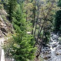 The trail down to the base of the lower falls.- Upper Fish Creek Falls