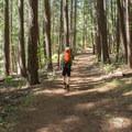 Hiking along the trail.- Alpine Lake