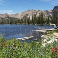 Hayden Peak (12,480') is one of the most recognizable of the Uinta peaks.- Ruth Lake