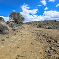 Much of the trail is up loose-packed dirt and steep four-wheel drive gravel trails.- Comstock Mining Loop