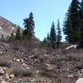 The trail crosses some rocky, brushy spots along the creek.- Crater Lake, Wallowas