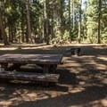 Hillside campsite.- South Shore Campground