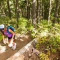 The trail climbs steadily without any real steep sections.- Rainbow Lake + Madeley Lake Hike