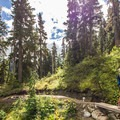 - Rainbow Lake + Madeley Lake Hike