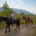 Horseback riding is popular here as well.- Mount Carbon Loop