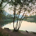 View over the lake.- Maple Lake Campground