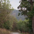 Southern view from the campground.- Maple Lake Campground