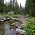 Snowmass Creek. - Four Pass Loop