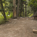 Typical site at Tanners Flat Campground. - Tanners Flat Campground