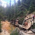 A bridge close to the start of the trail. - La Plata Peak