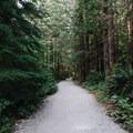 The start of the trail. - Gold Creek Falls, Lower Falls Trail
