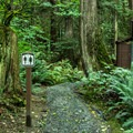 Toilets at the bottom of Old Buck.- Mount Seymour Trails: Old Buck + Pangor Loop
