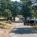 Typical campground road.- Moraine Park Campground