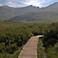 Boardwalks through the early brush and muddy sections.- Mount Bierstadt, West Slopes Route