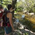 South Boulder Creek.- South Boulder Creek Trail via Bobolink Trailhead