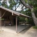 Day use shelter and giant cottonwood at the base of Mount Sanitas.- Mount Sanitas Trail