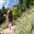 Royal Arch Trail.- Royal Arch Hike