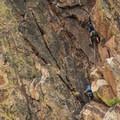 Climbers on the Redgarden Wall in Eldorado Canyon State Park.- Eldorado Canyon State Park