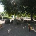 Playground at Chautauqua Park.- Chautauqua Park + National Historic Landmark