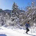 Tanners Flat is a great place to enjoy some winter sports as well.- Tanners Flat Campground