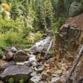 The last bend before the falls.- Secret Falls Trail