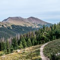 The trail soon rises above the trees.- Peak 12,150 Hike