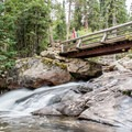 Bridge over Ouzel Creek just before Calypso Cascades.- Ouzel Falls Hike