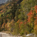Highway 210 is beautiful in all seasons, but it is truly a stunning drive in the fall.- Scenic Highway 210