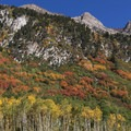 Aspen, maple, and oak trees under granite peaks near Grizzly Gulch.- Scenic Highway 210