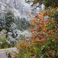 Serene beauty and around 500 inches of snow per year on Highway 210.- Scenic Highway 210