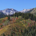 Looking back up toward Guardsman's from Wasatch Mountain State Park.- Scenic Highway 190 to Guardsman's Pass