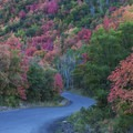 Driving down Snake Creek toward the town of Midway.- Scenic Highway 190 to Guardsman's Pass