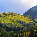 Just across from the Mill A Basin and the Butler Fork Trail.- Scenic Highway 190 to Guardsman's Pass