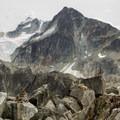 Rugged terrain.- Wedgemount Lake Hike