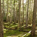 A short break from climbing.- Wedgemount Lake Hike
