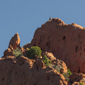 Climber at the top of North Gateway Rock, Garden of the Gods.- Garden of the Gods National Natural Landmark