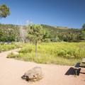 Picnic area at Garden of the Gods.- Garden of the Gods National Natural Landmark