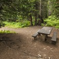One of three campsites at Buckingham Campground.- Buckingham Campground