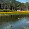 Small beaver ponds.- The Pool + Cub Lake Loop Hike