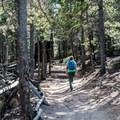 Start of the Longs Peak Trail.- Eugenia Mine Hike